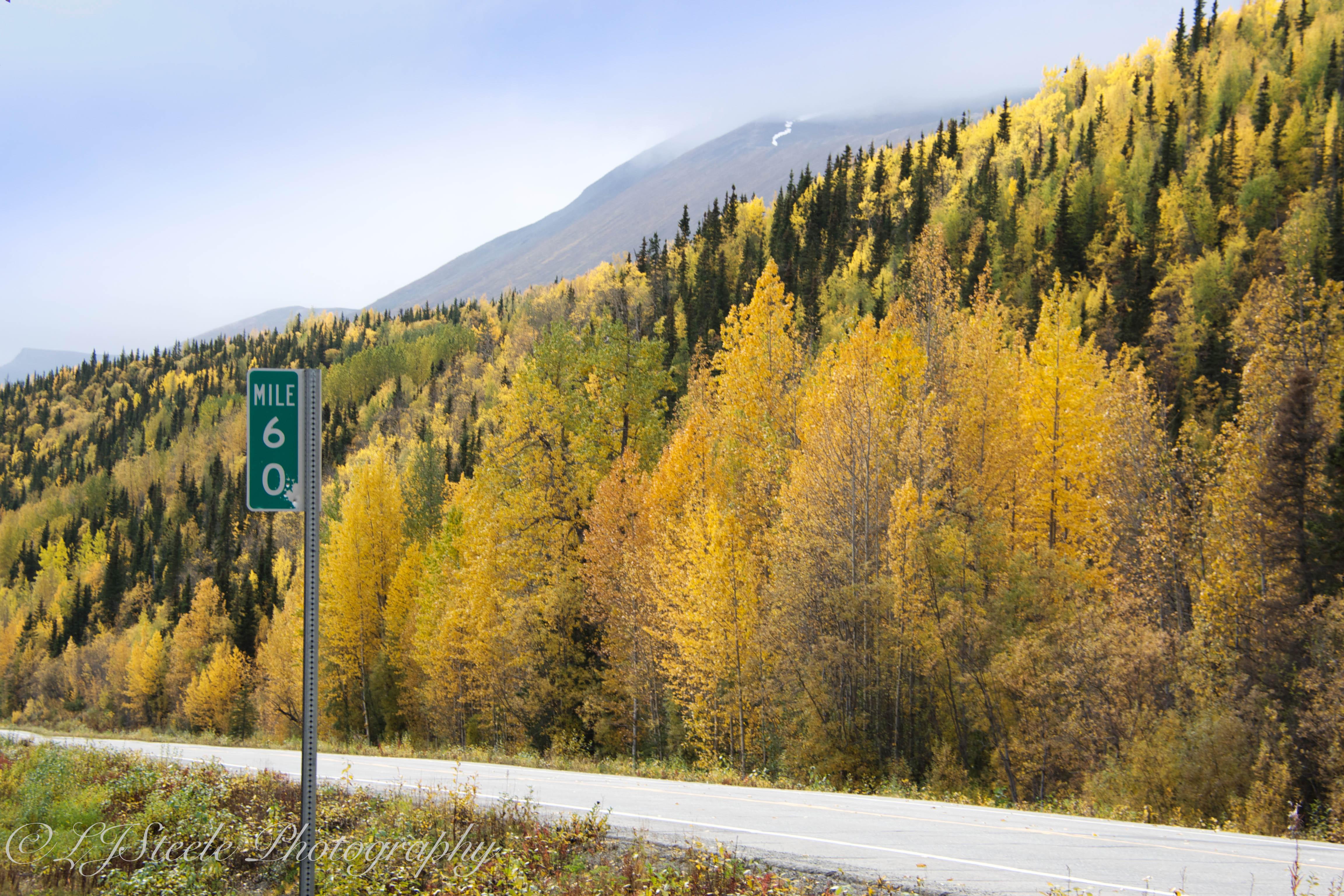 Fall Colors along the Richardson Hwy, Alaska